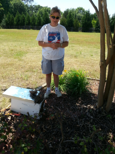 Removed A Honey Bee Swarm in Douglasville